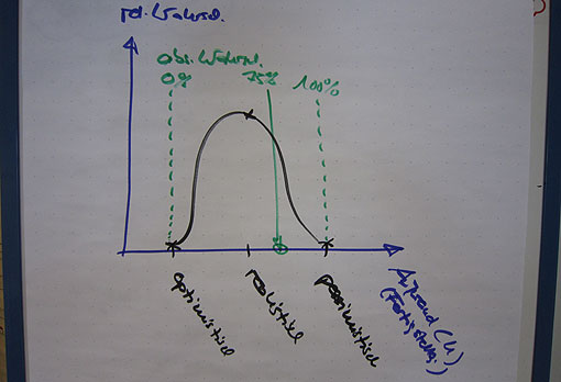 Wer fixe Projektkosten nennt, der flunkert immer dann, wenn er keine Wahrscheinlichkeiten dazu angibt. (Vereinfachte Darstellung)